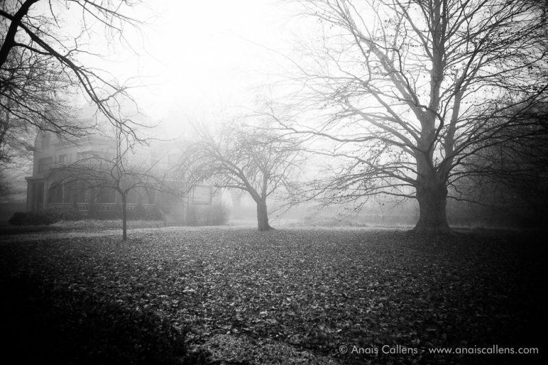 urbex in fog